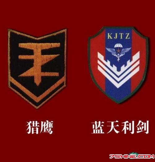 中国几支特种部队符号、标志权威详解[图]